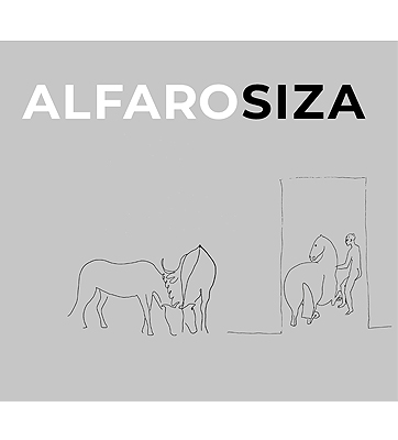 Alfarosiza. Ideas encontradas